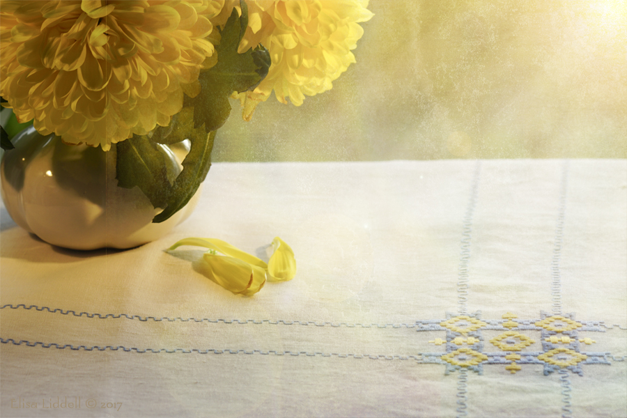 Still life with yellow chrysanthemums