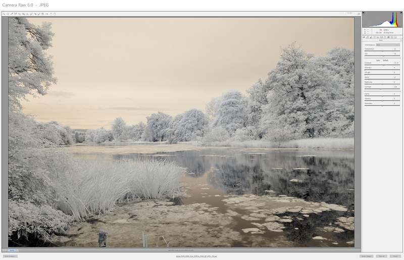 Infrared shot imported into Camera Raw