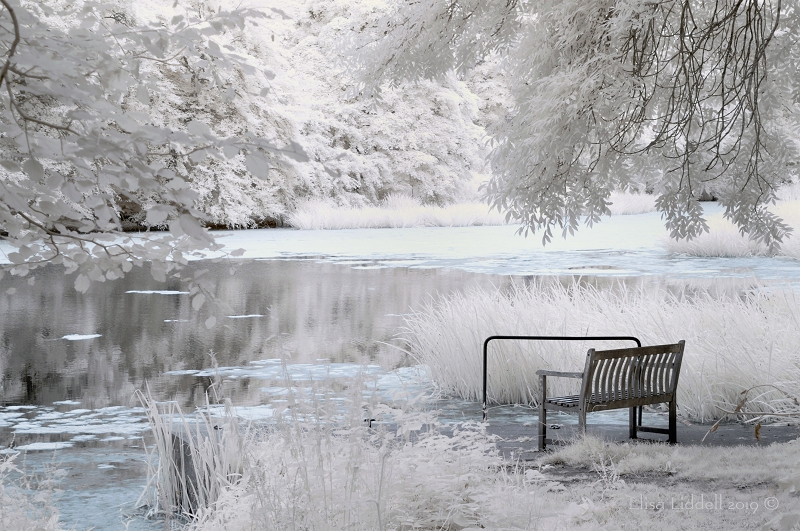 Infrared shot of Fyvie loch with bench.