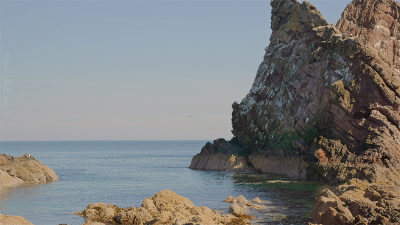 The rock strata at Bow Fiddle Rock