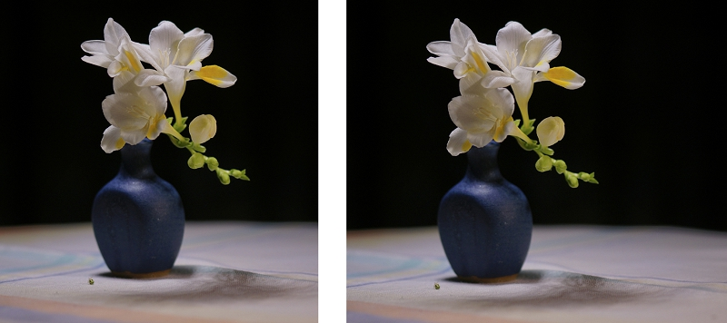 2 crops of a freesia