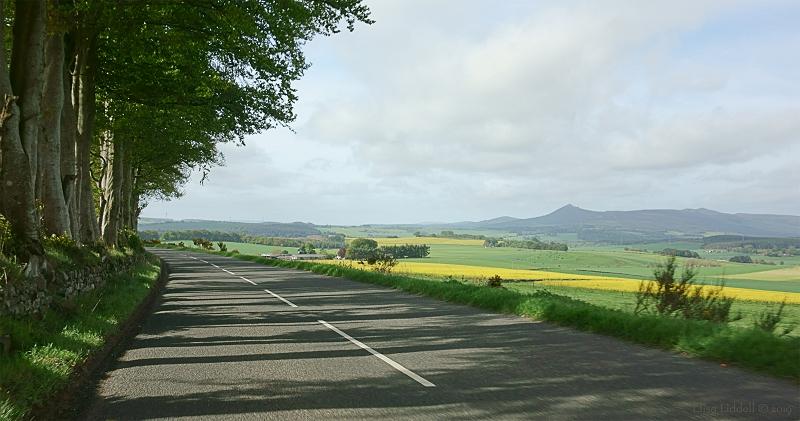 RX100 landscape shot
