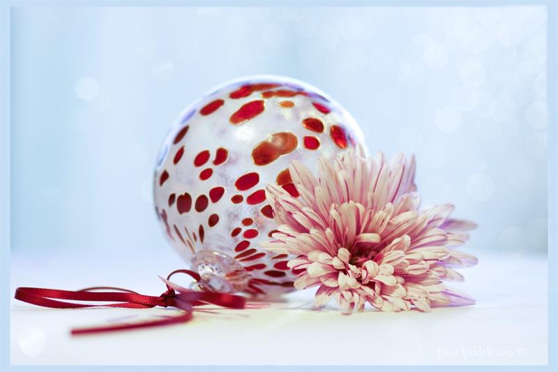 glass and red chrysanthemum