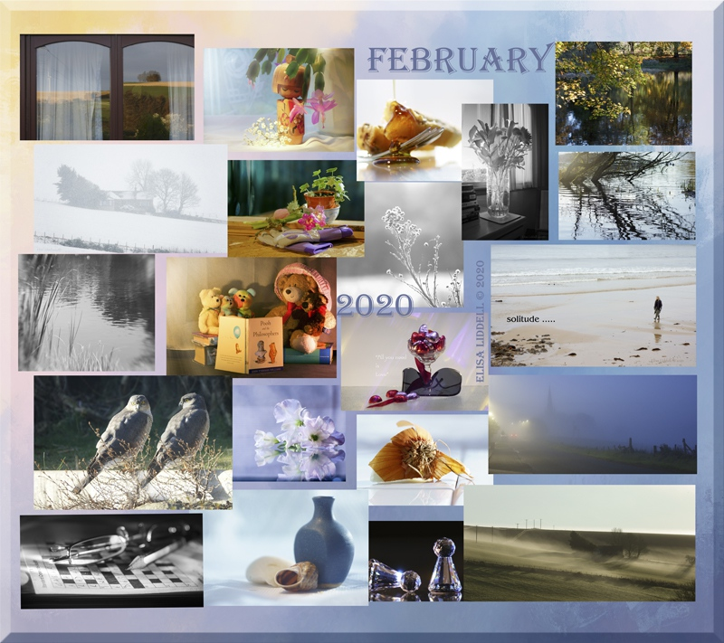 February on Flickr