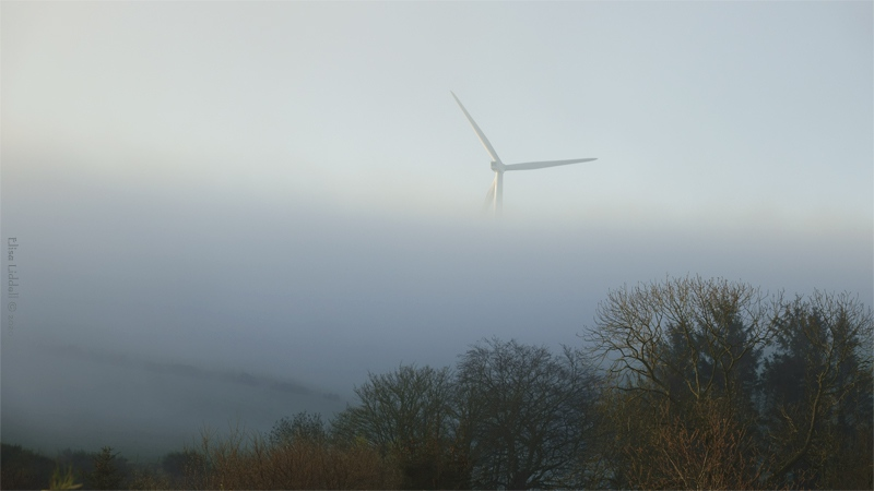 mist morning turbine