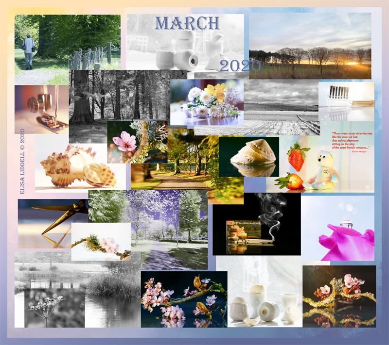 Collage for March 2020