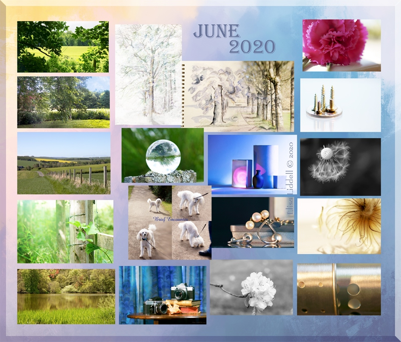 collage for June 2020