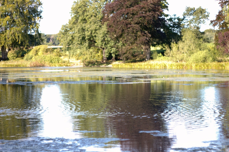 across the loch at Fyvie Castle