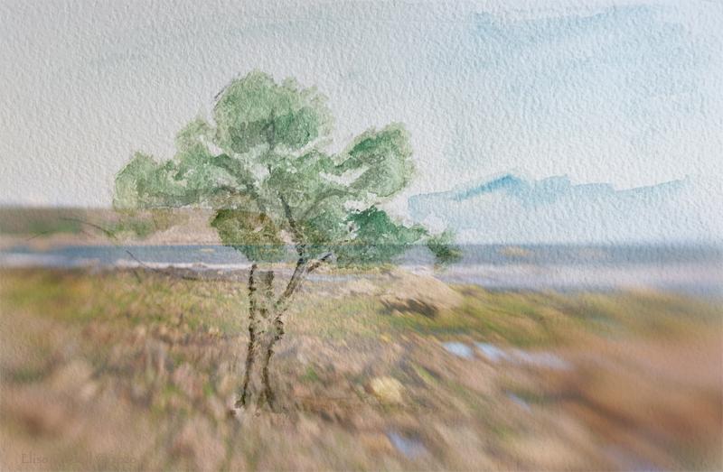 landscape blending