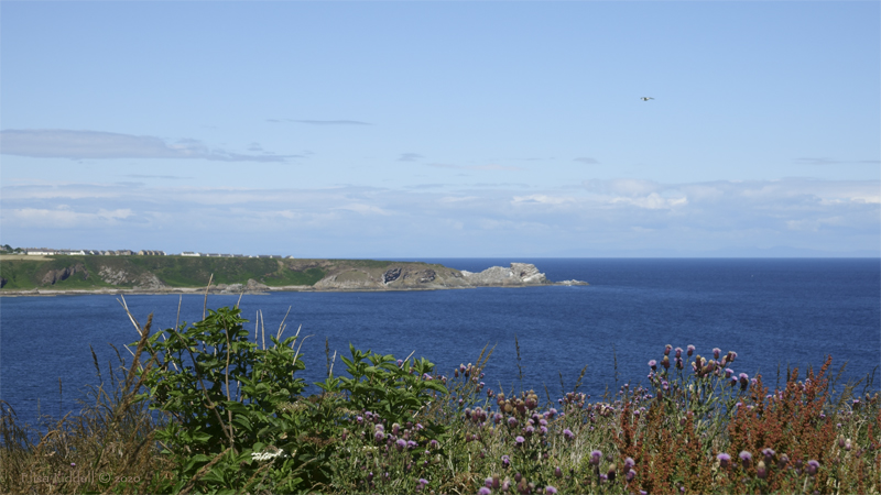 The view across Cullen Bay