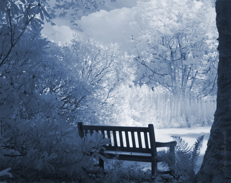infrared bench in blue