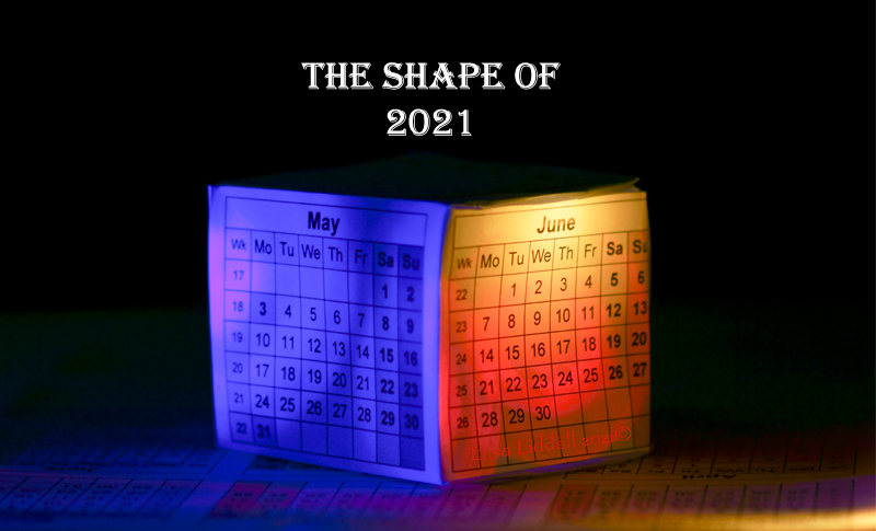 The shape of 2021