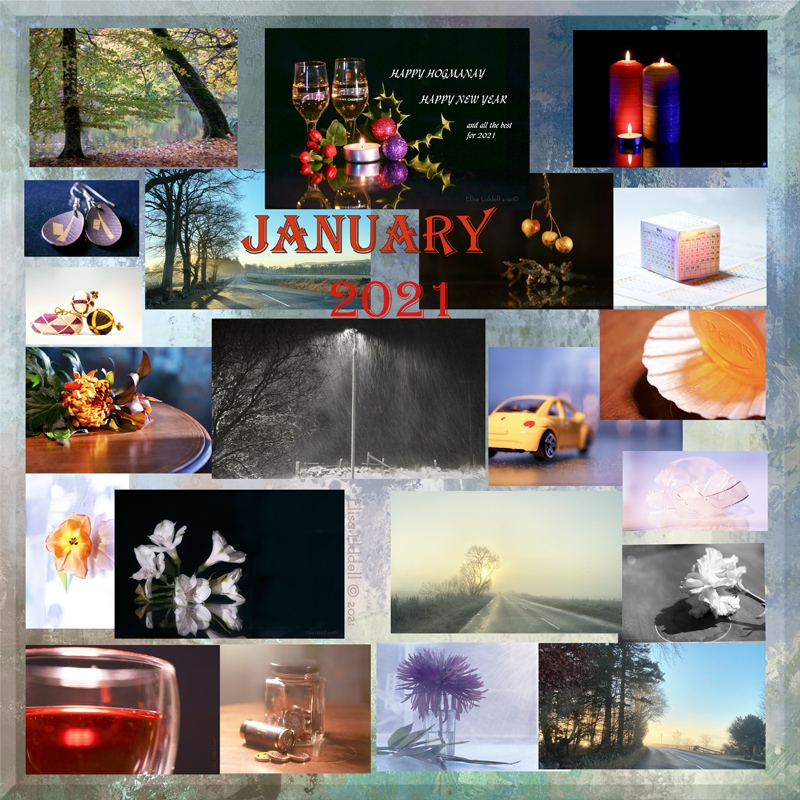 collage for January 2021