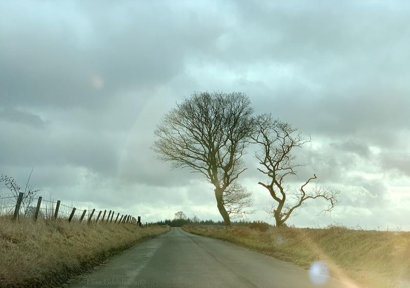winter road shot