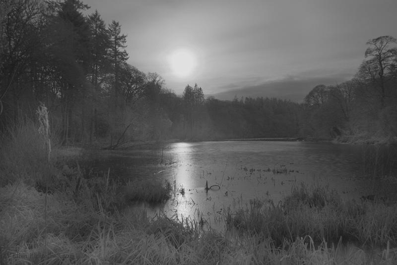 Infrared of Fyvie loch