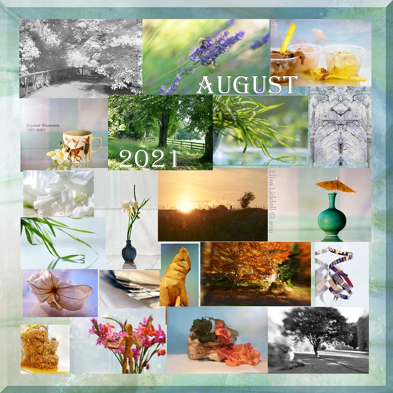August collage of Flickr postings